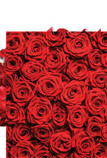 Reminisce 12x12 Paper Red Roses