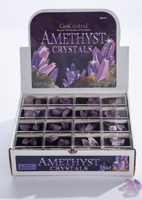 GeoCentral Stones to Go Boxes Amethyst Points