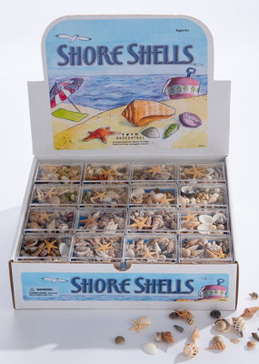 GeoCentral Stones to Go Boxes Shore Shells