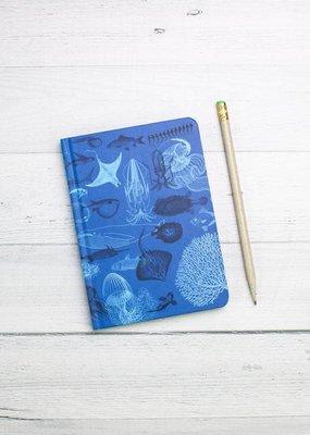 Cognitive Surplus Notebook Case Study Marine Biology Dot Grid