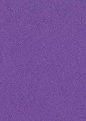 Bazzill Cardstock 8.5 x 11 Grape Delight