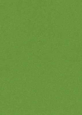 Bazzill Cardstock 8.5 x 11 Lime Crush