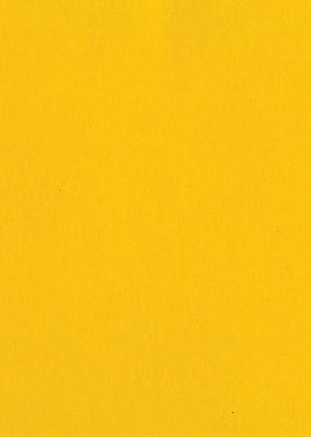 Bazzill Cardstock 8.5 x 11 Pineapple