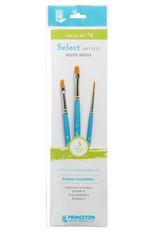 Princeton Art & Brush Co Select Artiste Brush Set #4