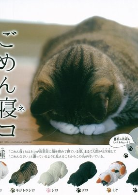Sleeping Cat Capsule Blind Box