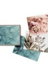 Fringe Boxed Notecards Wild Plants Thank You