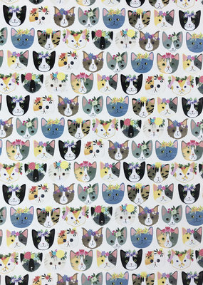 Jillson & Roberts Gift Wrap Roll Kitty Cats