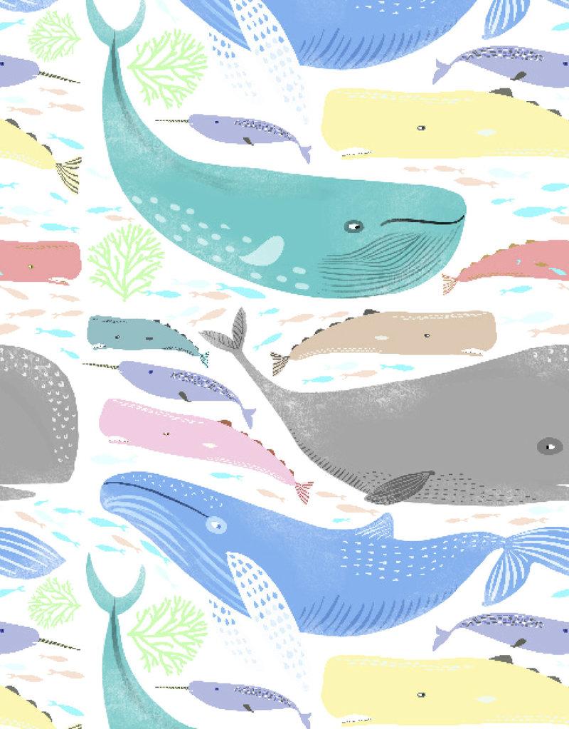 Jillson & Roberts Gift Wrap Roll Whale Thats Nice