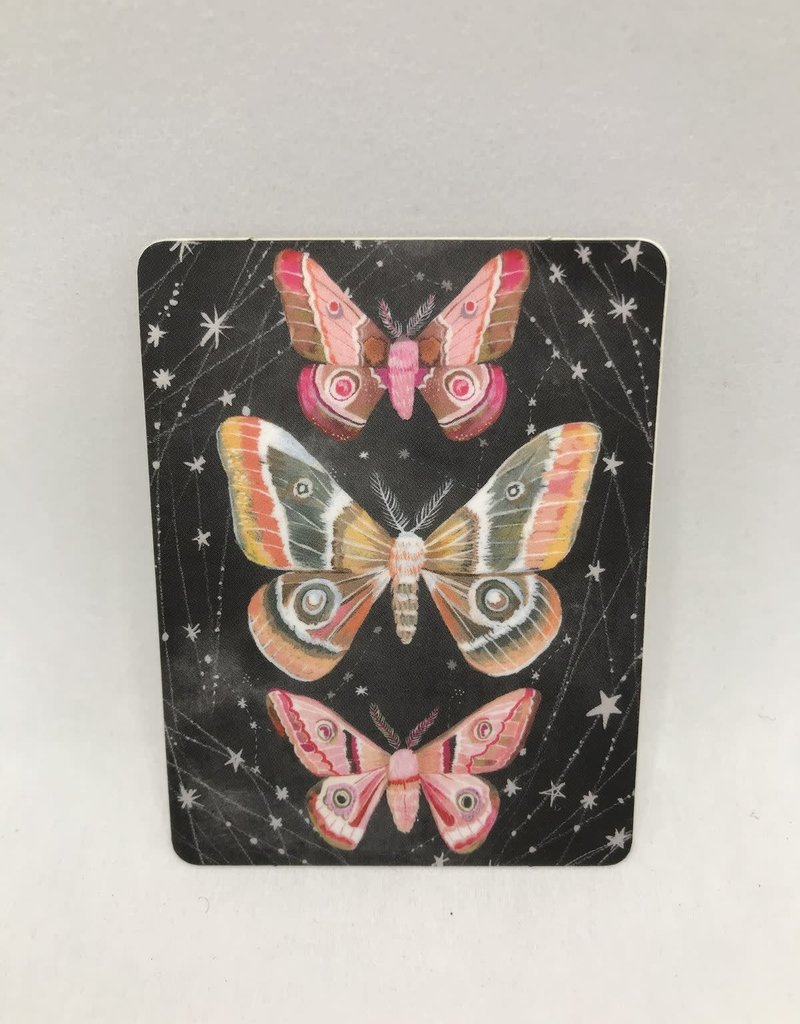 Katie Daisy Sticker Three Moth