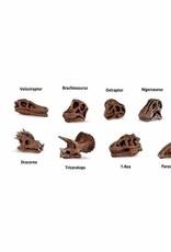 Safari Dino Skull Minis