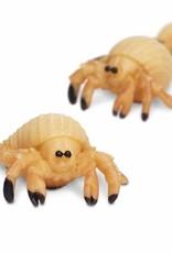 Safari Good Luck Mini Sea Creatures
