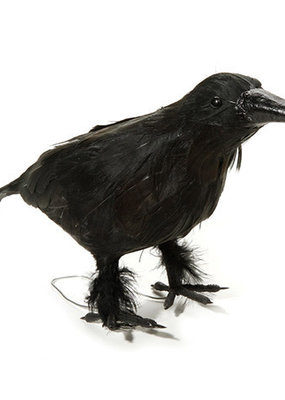 Darice Black Crow 10 Inch