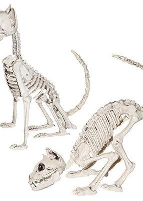 Darice Halloween Cat Skeleton
