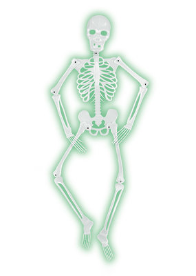 Mr Bones-A-Glo Skeleton 5'