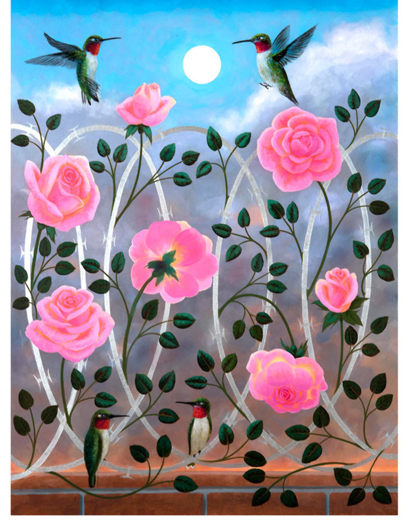 Pomegranate Boxed Cards Hummingbirds