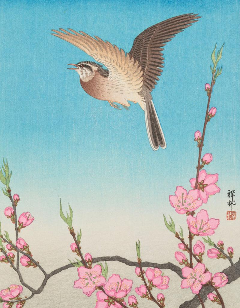 Pomegranate Boxed Cards Ohara Shoson Keepsake