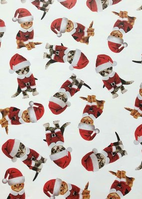 Jillson & Roberts Gift Wrap Roll Kitty Christmas