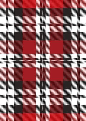 Jillson & Roberts Gift Wrap Roll Authentic Plaid