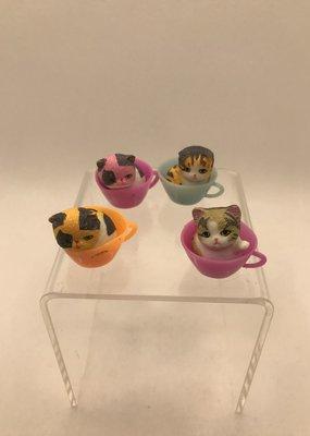 collage Teacup Kitties