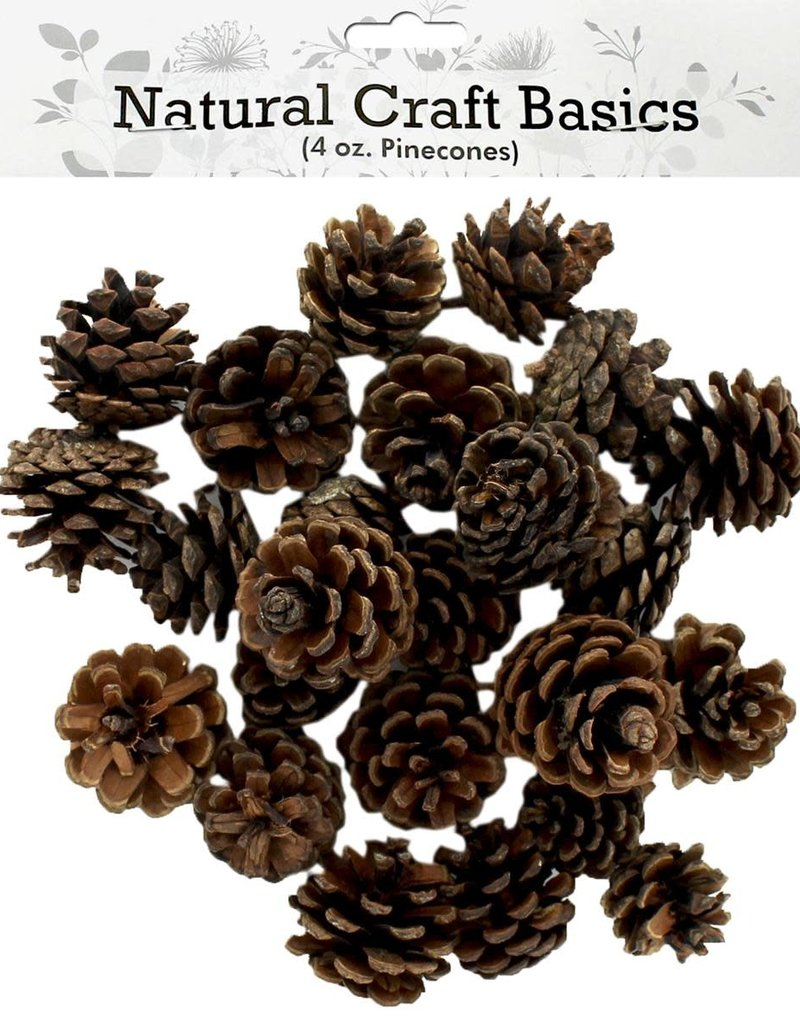 Sierra Pacific Crafts Small Natural Pinecones