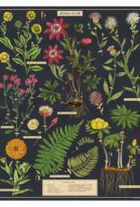 Cavallini 1000 Piece Jigsaw Puzzle Herbarium