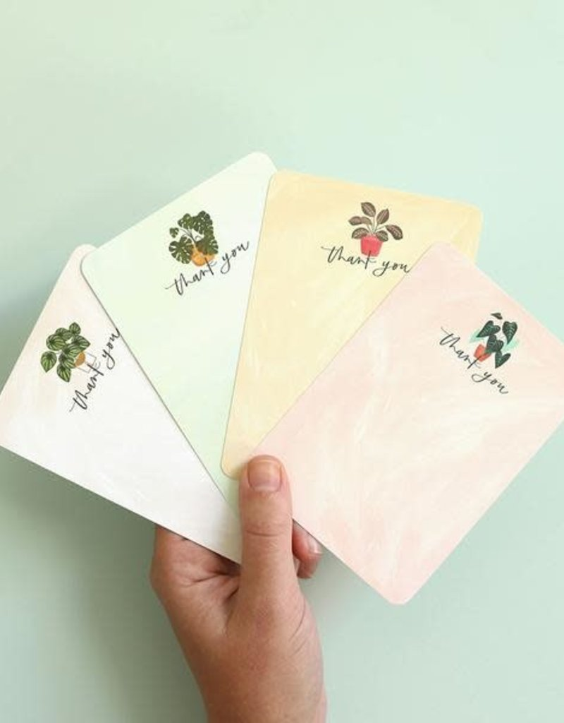 1 Canoe 2 Boxed Cards Thank You Plant