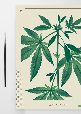 Coloready Paint By Number Cannabis Botanical