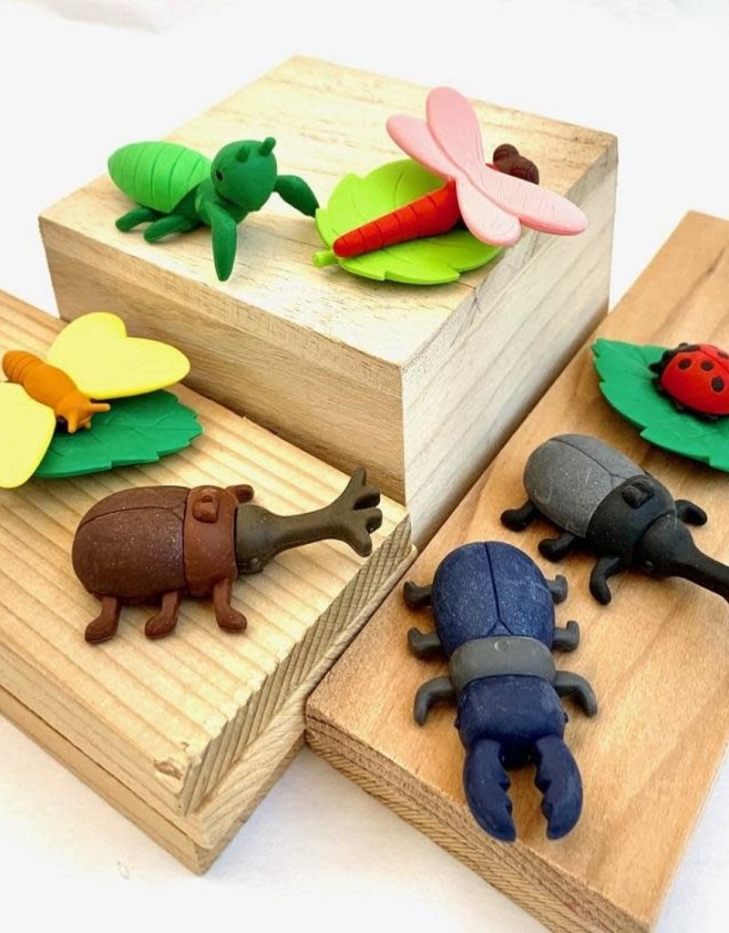 Bug Hunt Eraser Set