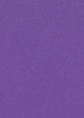 Bazzill Cardstock 8.5 x 11 Grape Delight 25 Pack