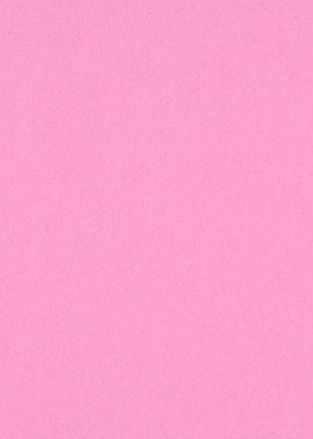 Bazzill Cardstock 8.5 x 11 Guava Sensation 25 Pack