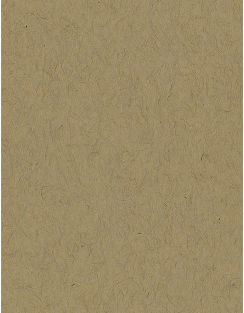 Bazzill Cardstock 8.5 x 11 Kraft 25 Pack