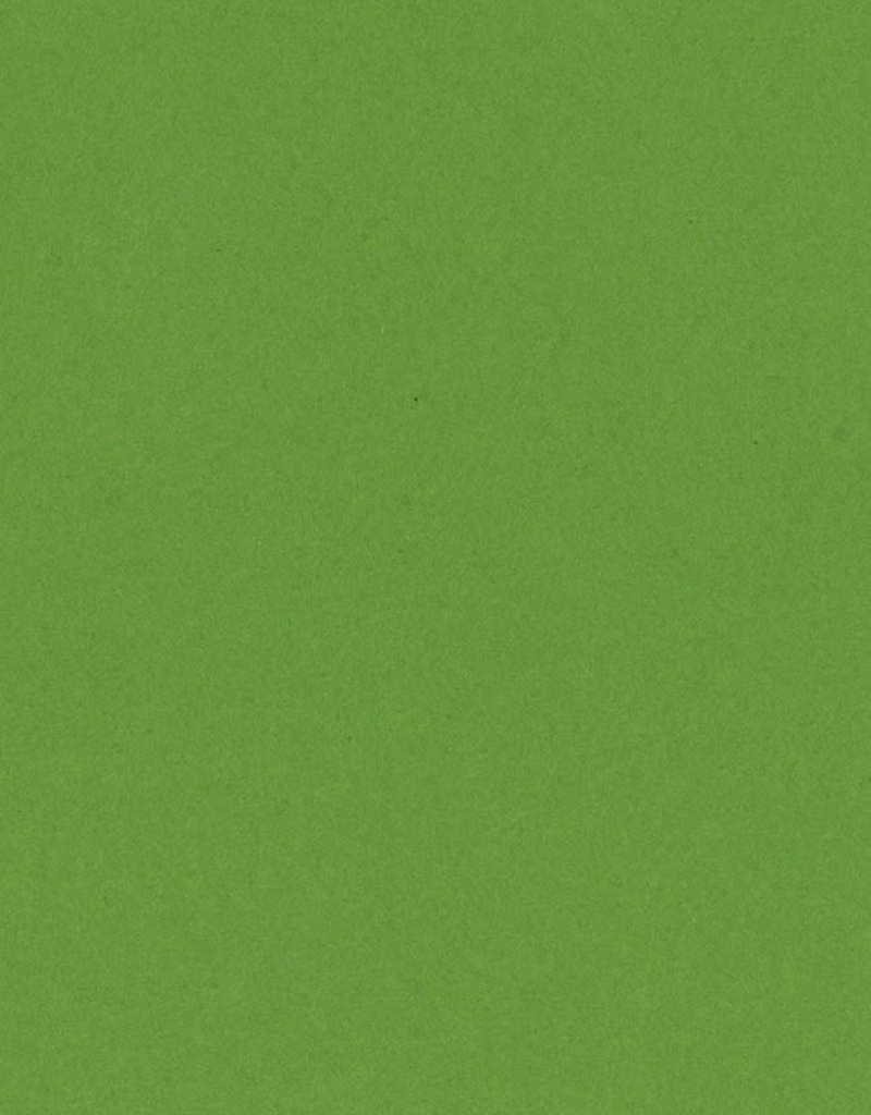 Bazzill Cardstock 8.5 x 11 Lime Crush 25 Pack
