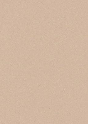 Bazzill Cardstock 8.5 x 11 Almond Cream