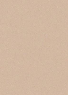 Bazzill Cardstock 8.5 x 11 Almond Cream 25 Pack