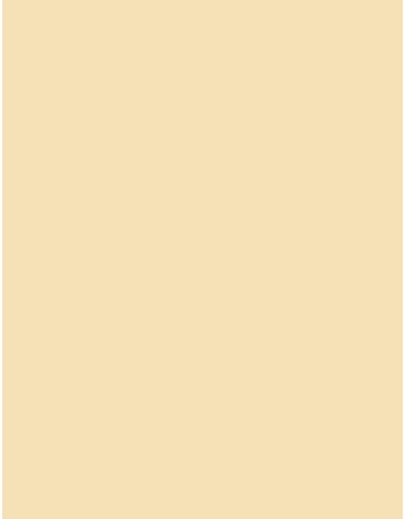 Bazzill Cardstock 8.5 x 11 Peach Cream 25 Pack