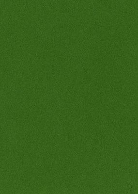 Bazzill Cardstock 8.5 x 11 Kiwi  Crush