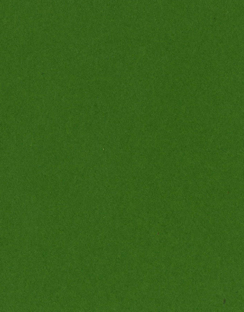 Bazzill Cardstock 8.5 x 11 Kiwi  Crush 25 Pack