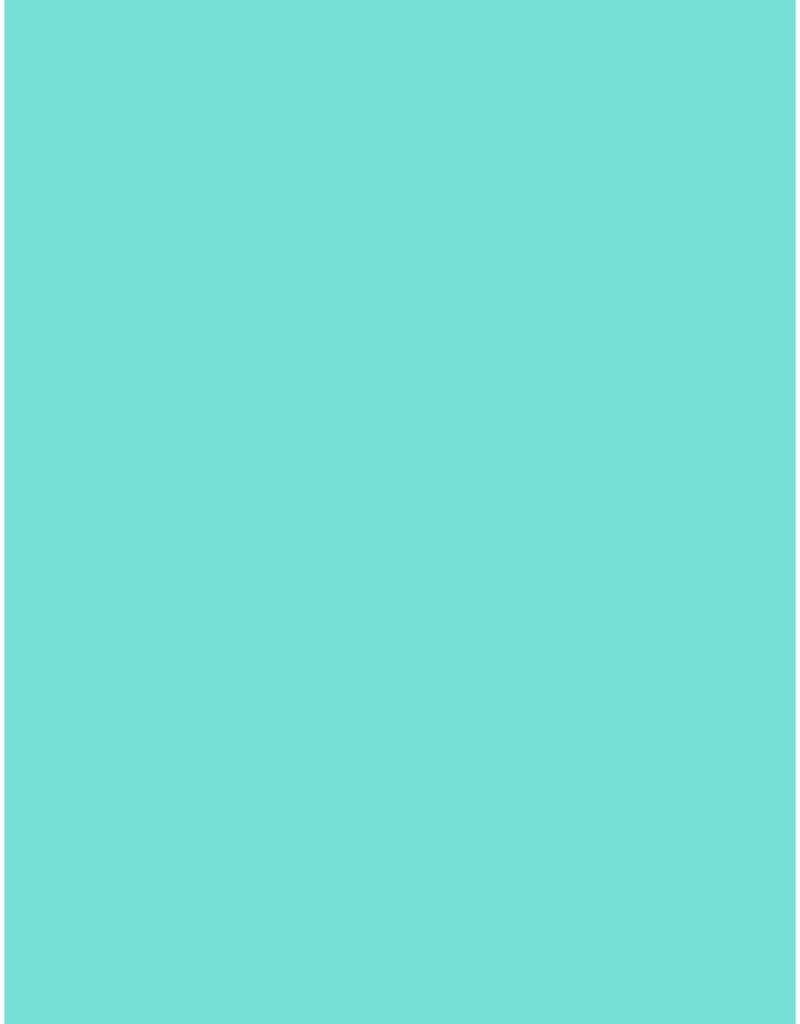 Bazzill Cardstock 8.5 x 11 Marine Mist