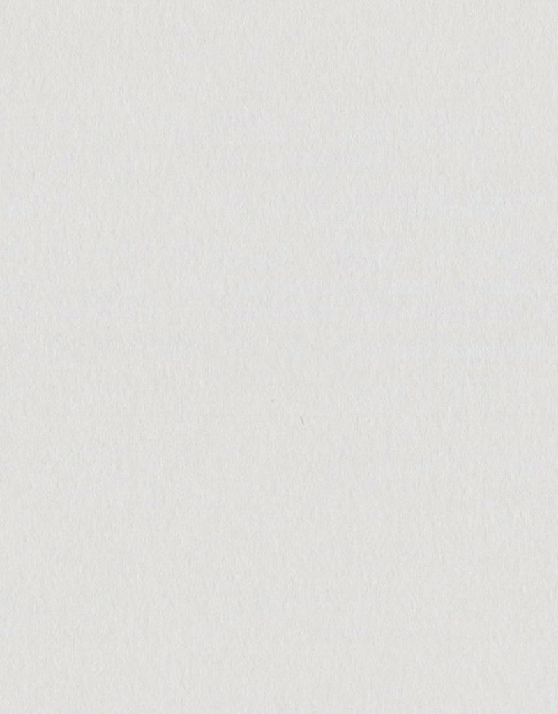 Bazzill Cardstock 8.5 x 11 Fig Swirl