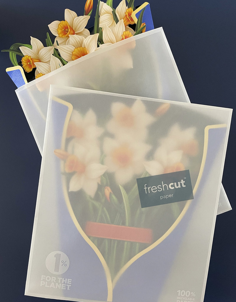Fresh Cut Paper Fresh Cut Paper Daffodils
