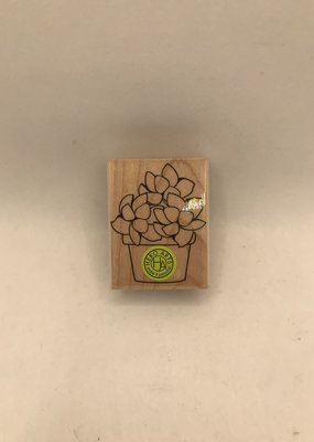 collage Stamp Small Potted Succulent