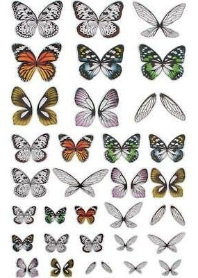 Tim Holtz Transparent Wings