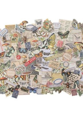Tim Holtz Ephemera Pack Field Notes