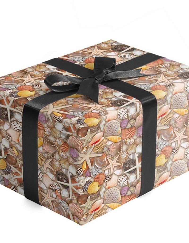 Jillson & Roberts Gift Wrap Seashells