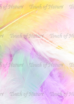 Touch of Nature Feathers Turkey Flats 14 Gram Pastel Mix
