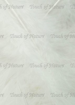 Touch of Nature Feathers Turkey Flats 14 Gram White