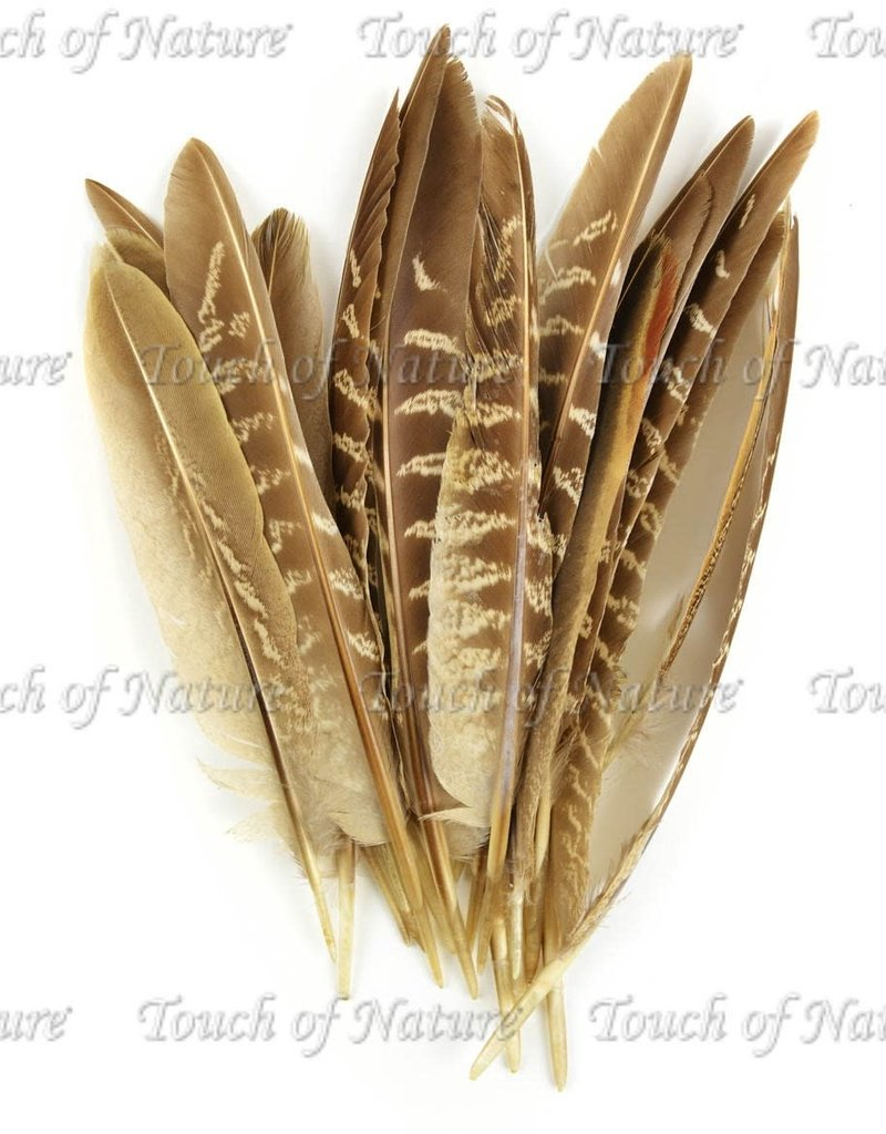 Touch of Nature Feathers Pheasant Wing Quill 7 Inch