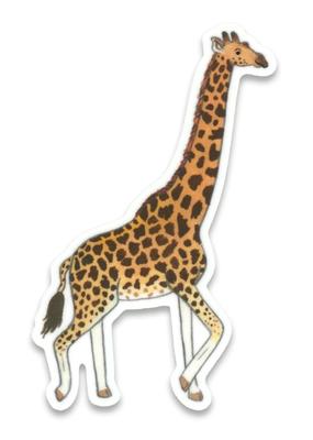 Cactus Club Sticker Giraffe