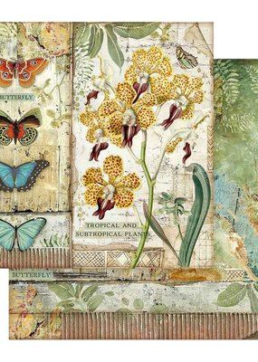 Stamperia 12 x 12 Decorative Paper Orchid & Butterfly
