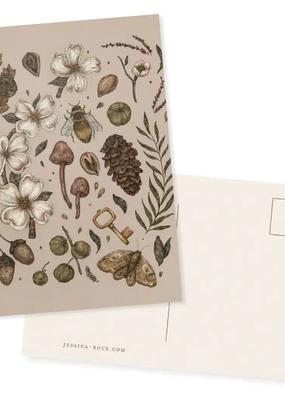 Jessica Roux Illustration Postcard Nature Walks Light
